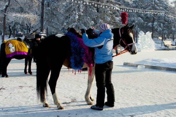 A horse and a pony in the ice city, Irkutsk