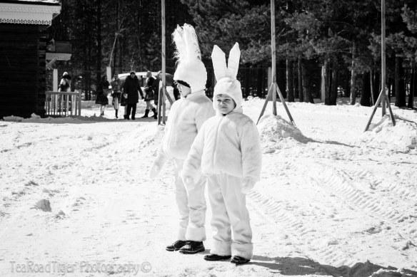 Bunnies in Siberia.