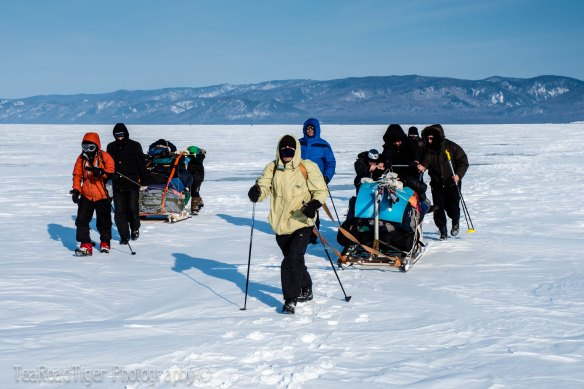 Sledge teams crossing the snowpacked ice of Baikal.