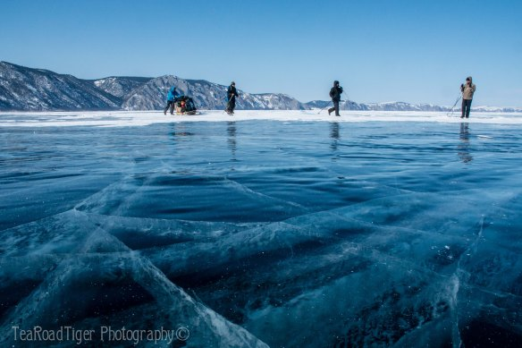 Sledge team crossing Lake Baikal.